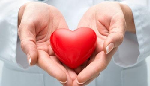 Imagem da Notícia 5 Atividades Físicas Benéficas ao Coração