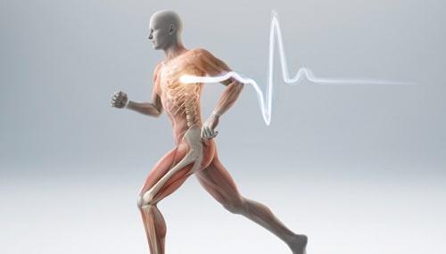 Imagem da Notícia Pós em Medicina do Esporte.