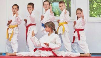 Imagem da Notícia Lutas e artes marciais na escola: o ensino e as possibilidades pedagógicas