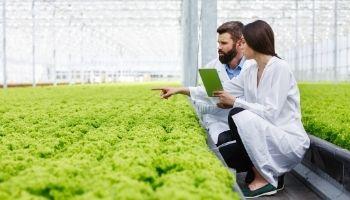 Imagem da Notícia O papel do nutricionista na indústria de alimentos: quais são as possibilidades na carreira?