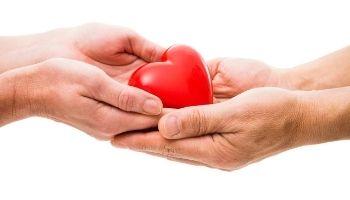 Imagem da Notícia Qual é o papel do profissional de Enfermagem na doação e transplante de órgãos?